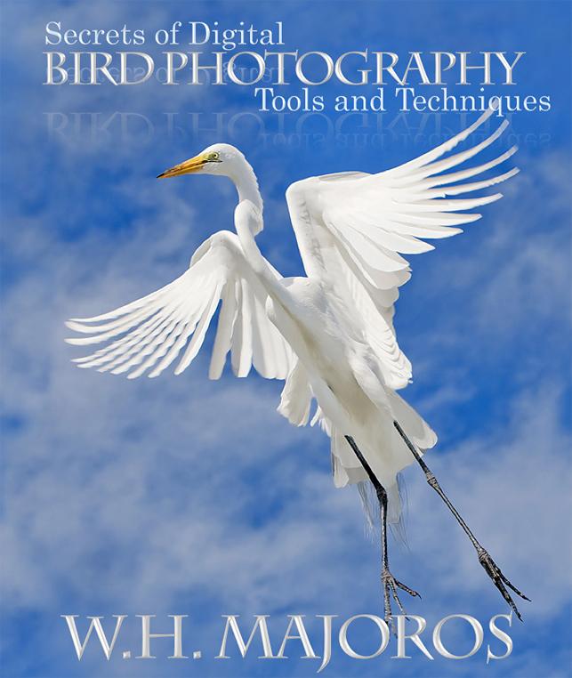 Secrets of digital bird photography lenses